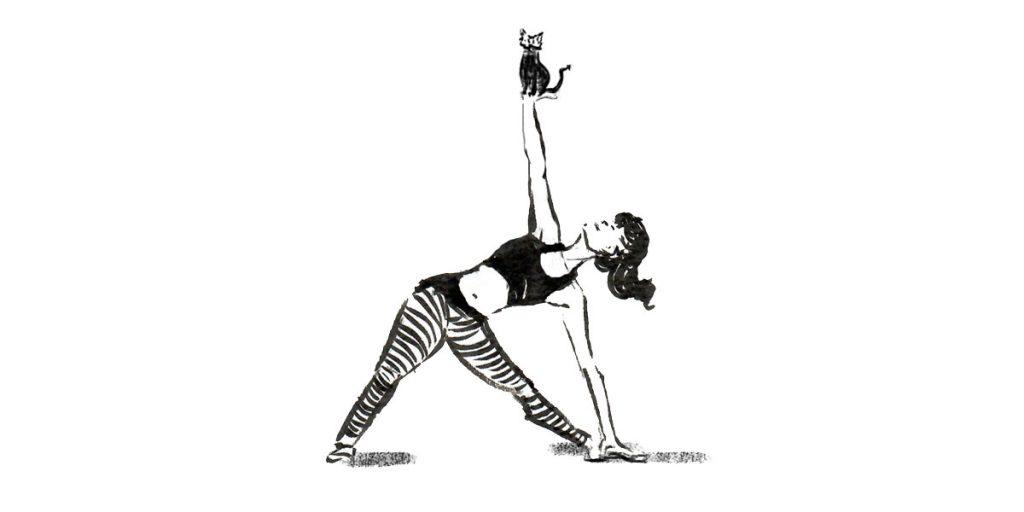 Yoga mit Katze. Spannung und Stärke.