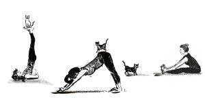 Yoga mit Katze. Balance und Vertrauen. Illustration und Text Johanna Leitner Wien