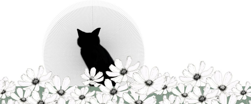 Meditierende Katze Illustration Johanna Leitner Wien