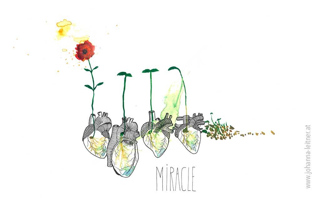 Herzgespräche bewirken Wunder