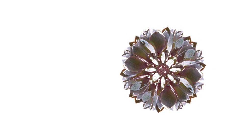 Mandala mit natürlichen Farben